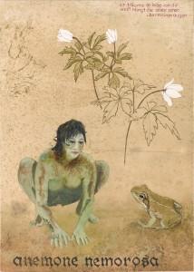 Sonia Gansterer
